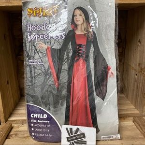 Hooded Sorceress costume